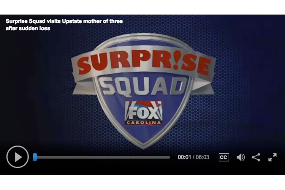 Fox Surprise Squad Greenville Carpet One Floor and Home