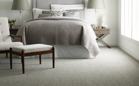 learn more about carpet